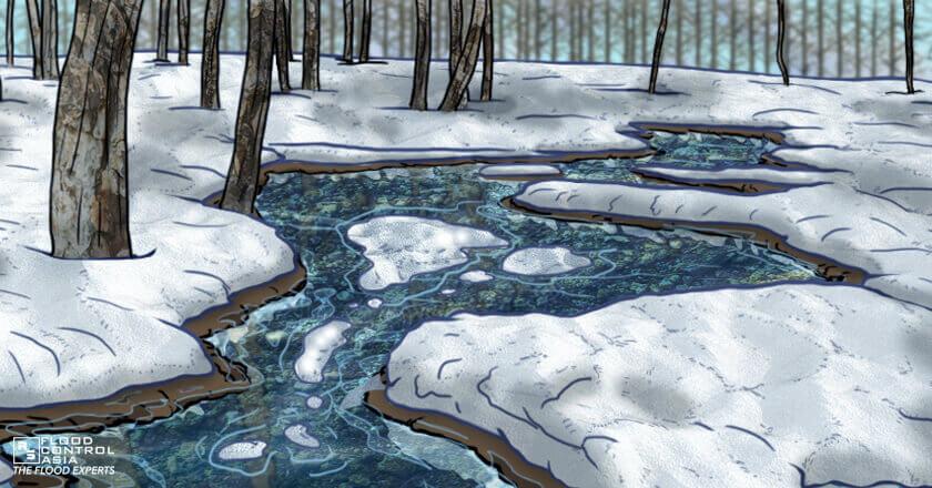 Snow melts under trees, winter flooding