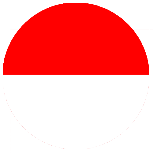 rs group indonesia flag circle