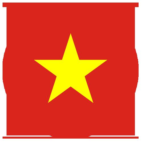 rs group vietnam flag circle