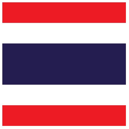 rs group thailand flag circle
